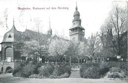 Wiesbaden Restaurant Auf Dem Neroberg 1334 - 1911 - Wiesbaden