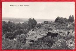 91 ? PUISELET Roche à Dubois - TBE  - R/V - Palaiseau