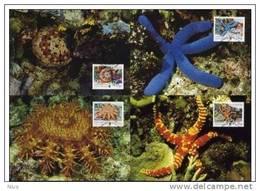 British Indian Ocean Territory 2001 WWF W.W.F MC Sea Stars Set X4 Marine Life Fauna Maximum Cards, India - Maximum Cards