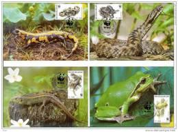 Belgium Belgique Belgie 2000 WWF W.W.F. Maximum Cards X4 Reptiles Frog Snake Salamandra - Cartoline Maximum