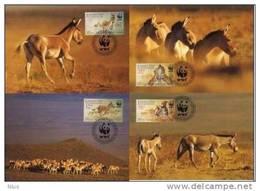 Kazakhstan 2001 WWF W.W.F. Maximum Cards Maxicards Kulan Horse Set X4 MC Fauna - Maximum Cards