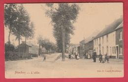 Stockay - L'Allée ... Belle Animation - 1908 ( Voir Verso ) - Saint-Georges-sur-Meuse