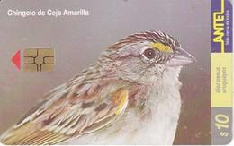 Nº 130 TARJETA PAJARO CHINGOLO CEJA AMARILLA DE 10$ (BIRD) - Uruguay