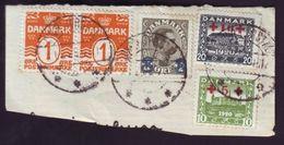 DENMARK 1921 RED CROSS - Denmark
