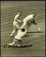 ORIGINAL PRESS PHOTO 1952 YORKSHIRE V SURREY THE OVAL CRICKET - Other Collections