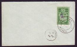 ISRAEL 1948 'RAANANA' COVER - Unclassified