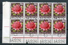 AUSTRALIA 1967 WARATAH NSW GOVERNMENT PERFIN BLOCK - Sheets, Plate Blocks &  Multiples