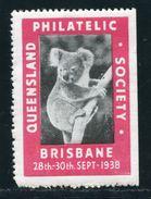 AUSTRALIA KOALA BEAR BRISBANE QUEENSLAND EXHIBITION - Australia