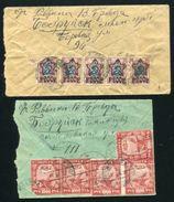 RUSSIA BELARUS BOBRUISK 1920s TO SOUTH AFRICA - Belarus