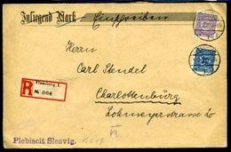 SCHLESWIG HOLSTEIN PLEBISCIT SLESVIG 1920 - Germany