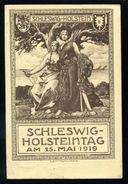 SCHLESWIG HOLSTEN WW1 GERMANY DENMARK AMAZING POSTCARD - Germany
