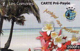 Comoros - Comores 2500 Fc Preé-payée Phonecard, Used - Comoros
