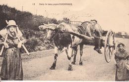 1257-MALMEDY  Dans Le Beau Pays D'ARDENNES - Malmedy