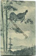 Jagd - Auerhahn - Künstleransichtskarte Ca. 1900 - Caccia