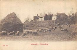 CPA  60 LABOISSIERE PARFONDEVAL - France
