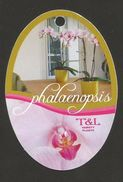 # PHALAENOPSIS T&L VARIETY PLANTS Tag Balise Etiqueta Anhänger Cartellino Orquidea Orchid Orchidee - B. Plantes Fleuries & Fleurs