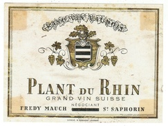 Rare // Plant Du Rhin, Fredy Mauch, St.Saphorin, Vaud // Suisse - Etiquettes