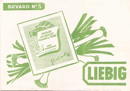 France Buvard Liebig ( Pliure, Tache Déchirure ) 20 Cm X 14,5 Cm - Soups & Sauces