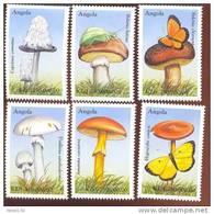 ANGOLA   1095-1100  MINT NEVER HINGED SET OF STAMPS OF MUSHROOMS ; BUTTERFLIES  #  S-009   ( - Paddestoelen