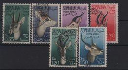 1955 Somalia AFIS Animali Serie Cpl US - Somalia