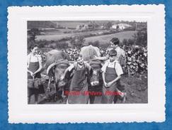 Photo Ancienne - à Situer - Portrait D' Enfant Devant Un Bel Attelage De Boeufs - Garçon Boy Agriculture Vignes - Métiers