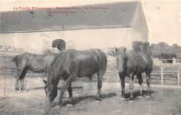 61 - ORNE / 61689 - Dorceau - La Ferme Neuve - Chevaux Percherons - France