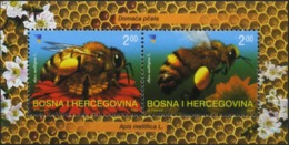 BOSNIA AND HERZEGOVINA 2004 Honey Bees, Insects, Fauna MNH - Bosnia And Herzegovina