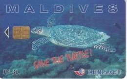 TARJETA DE MALDIVES DE UNA TORTUGA  (TURTLE) - Maldivas