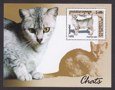 Cambodia, Scott #2127, Mint Hinged, Cats, Issued 2001 - Cambodge