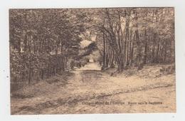 ORROIR MONT DE L'ENCLUS / ROUTE VERS LA SAPINIERE - Mont-de-l'Enclus