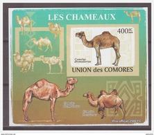 0200 Comores 2009 Kameel Camel S/S MNH Imperf - Autres