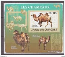 0199 Comores 2009 Kameel Camel S/S MNH Imperf - Autres