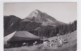 Chalet De La Chenauda Sur Le Chemin Du Moléson - FR Fribourg