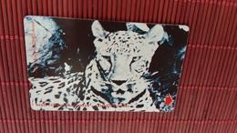 Phonecard Tiger Rare - Phonecards