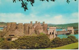 (UK409) CONWY CASTLE FROM GYFFIN HILL ... UNUSED - Pays De Galles