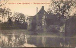 Château De CHANTELOUP - La Chapelle Et La Tour - France