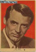 Cinema Attore Attrice Cary Grant Anni 50 (cartolina Ed.s.i.p.ci Milano) - Actors