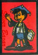 CARTOLINA IN VELLUTO-CARTE POSTALE VELOUR-VELVET POSTCARD-SAMTKARTE-AVVOCATO - Cartoline
