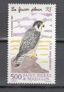 Saint Pierre Et Miquelon 1V,birds Of Prey,roofvogels,greifvögel,oiseaux,pajaros,uccelli,aves,MNH/Postfris(A3426) - Aigles & Rapaces Diurnes