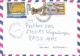 Burkina Faso 2004 Kongoussi Carlin Dog Wood Sculpture China Cooperation Rice Field Cover - Burkina Faso (1984-...)