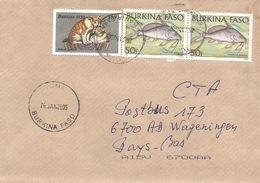 Burkina Faso 2005 Toma Japanese Bobtail Cat Freshwater Fish Cover - Burkina Faso (1984-...)