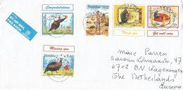 Namibia 1999 Windhoek Guinea Fowl Bushman Cover - Namibië (1990- ...)
