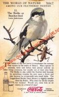 The World Of Nature - Collector Card - Coca-Cola 6x10cm - Coca-Cola