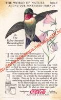The World Of Nature - Collector Card - Coca-Cola 6x10cm - Altri