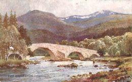 Sutton Palmer  -  The Old Mar Bridge & The River Dee With Lochnagar Mountain Behind   -    7349 - Altre Illustrazioni