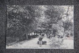 CONSTANTINOPLE : Route Du Bois De BELGRADE - Turquie