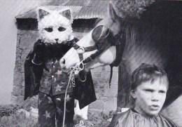 56 - Morbihan - GUEMENE SUR SCORFF -  Cavalcade 1984 - Le Chat Botté - Photo Y.Kervinio - 150 Exemplaires - Guemene Sur Scorff