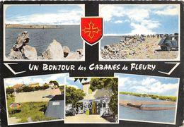 11-FLEURY- UN BONJOUR DES CABANES  - MULTIVUES - France