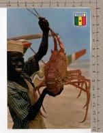 République Du Sénégal - Pêcheurs De Langoustes / Lobster Fishers - Sénégal
