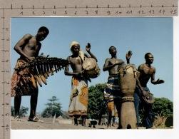 L'Afrique En Couleurs - Séance De Tam-tam / Africa In Pictures - Tam-Tam Performance - Musique